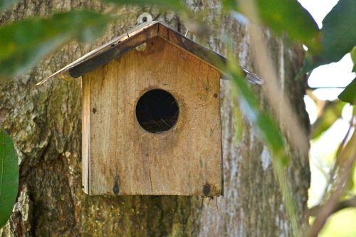 bird nest breeding box bird shelter