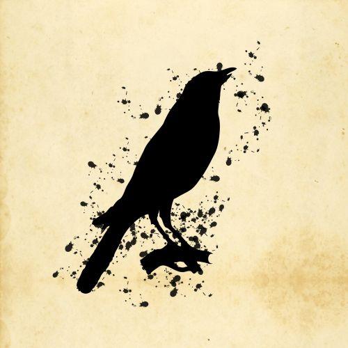 Bird Paint Splatter Illustration