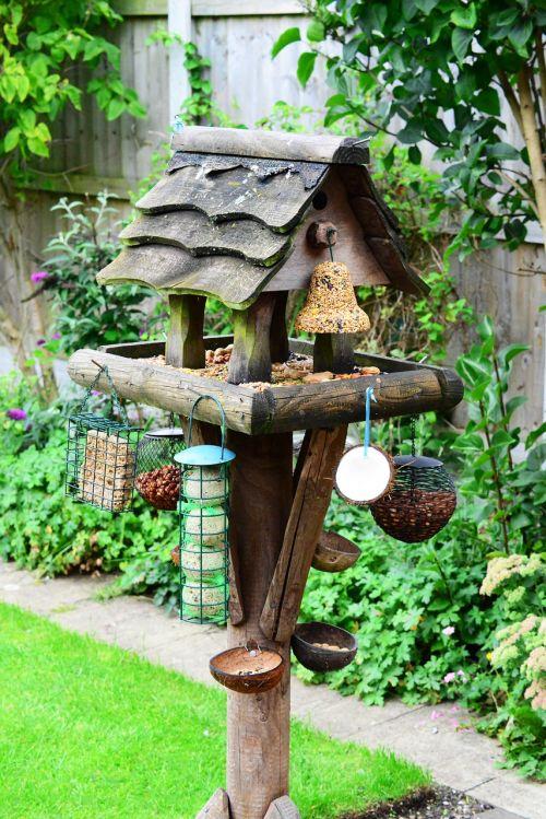 bird table feeding station bird food