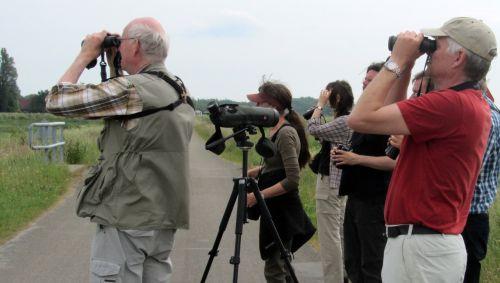 bird watchers dyke birds