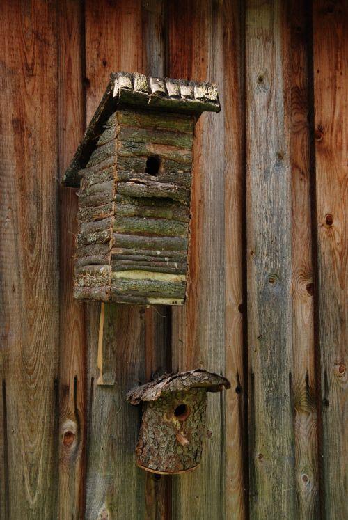 birdhouse bird nest