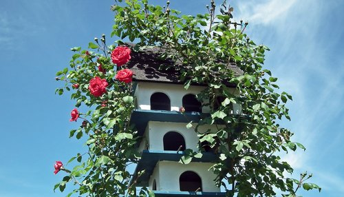 birdhouse  ornament  wooden