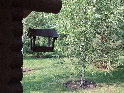 birdhouse dacha forest