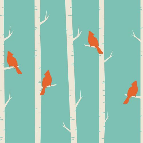 birds tree birch