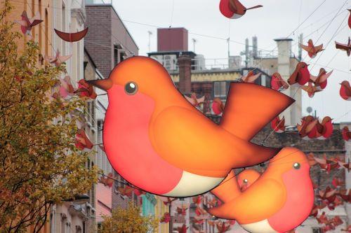 birds london soho
