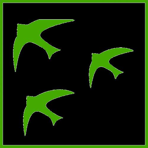 birds ecology green