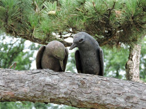 birds wood garden
