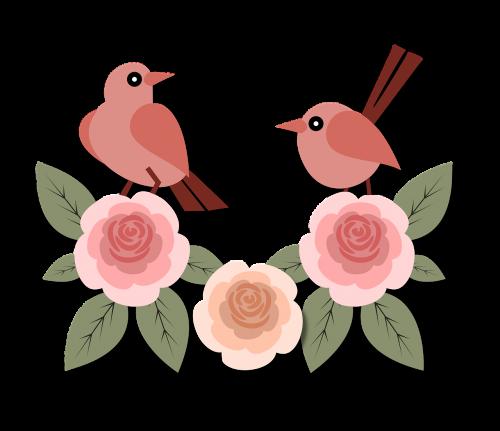birds animals roses