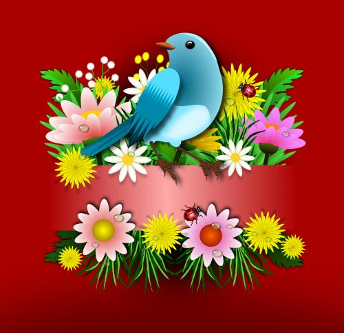 birds animals flowers