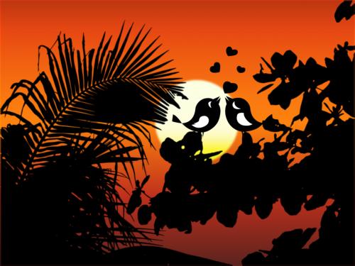 birds silhouettes sun
