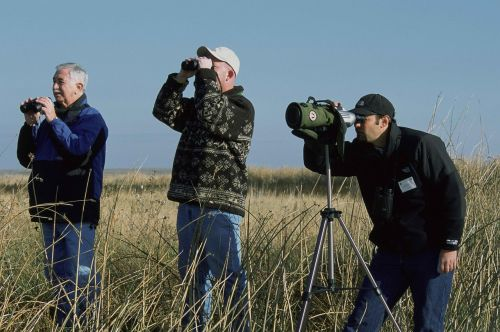 birdwatching stand group