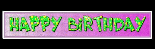 birthday banner the inscription