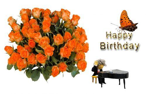 birthday birthday card greeting card