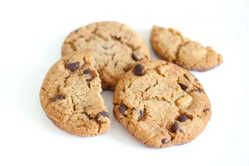 biscuit cookie chocolate