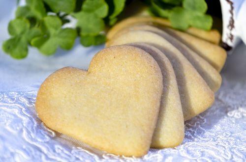 biscuit cookies vanilla cookie
