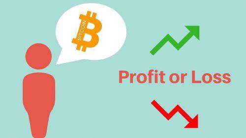 bitcoin profit loss