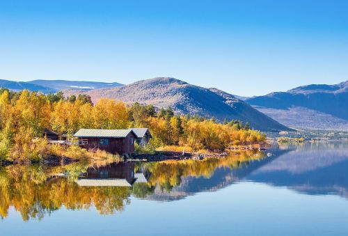 björkudden lapland autumn