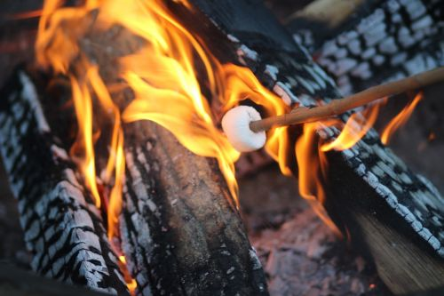 black brown fire