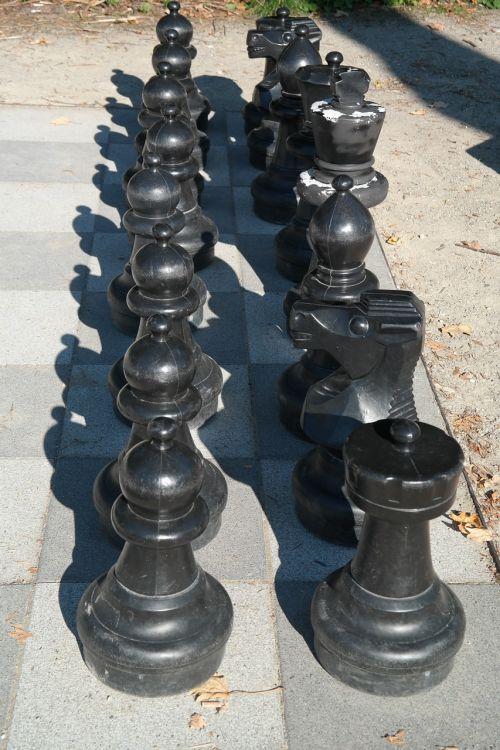 black chess chess board