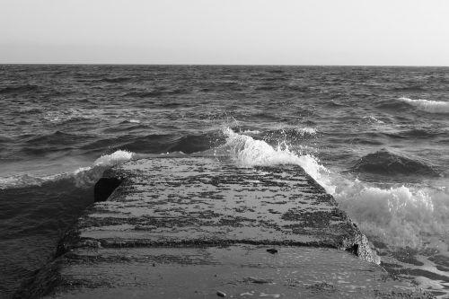 black white picture