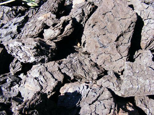 black btu coal