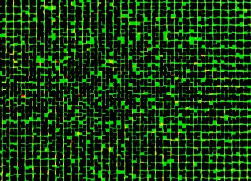 Black And Bright Green Pixels
