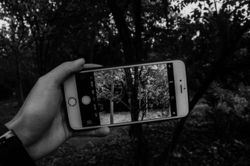 black and white mobile picture-in-picture