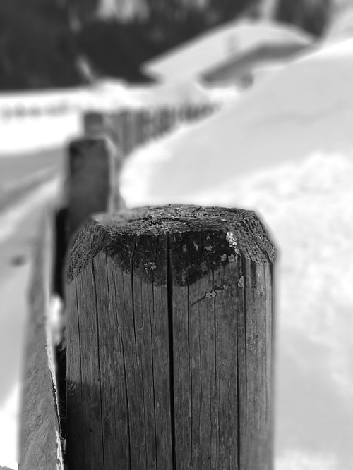 black and white  picket fence  snow