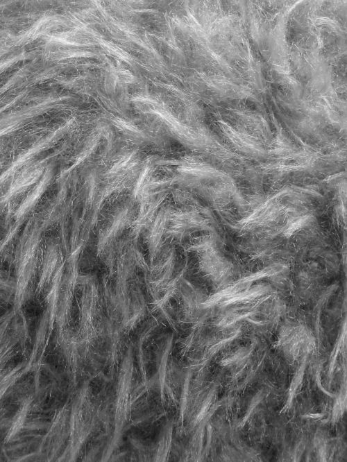 Black And White Furry Background