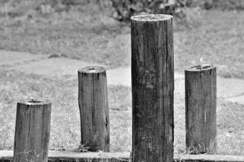 Black And White Poles