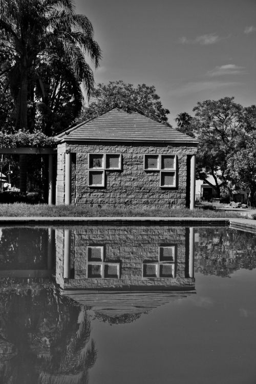Black And White Reflection In Pond