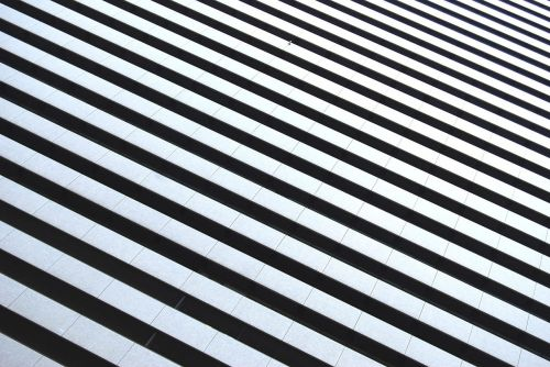 black and white stripes zebra stripes stripe