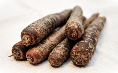 black carrots urkarotte urmöhre