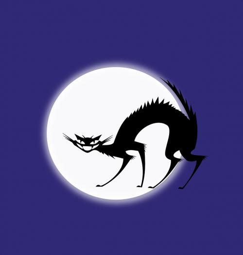 black cat halloween full moon