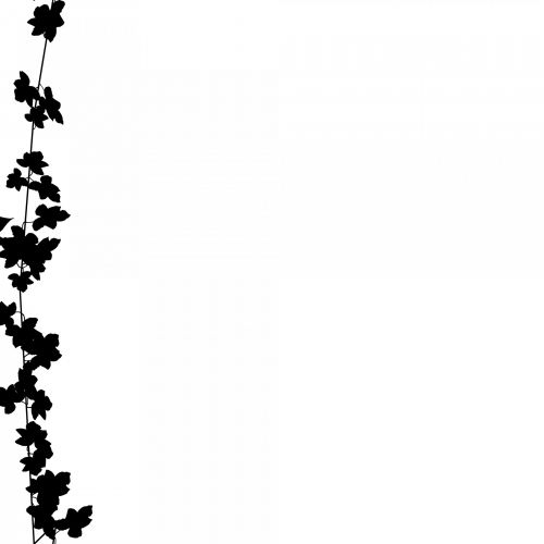Black Deco Line