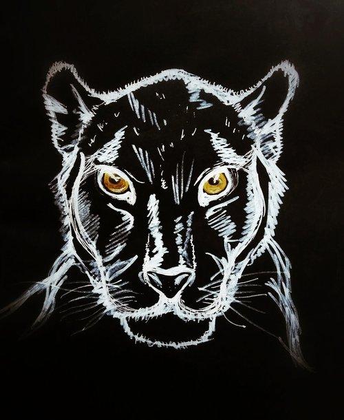 black panther  figure  black background