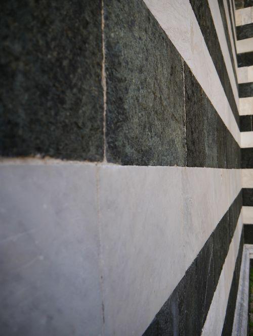 black white stripes zebra stripes
