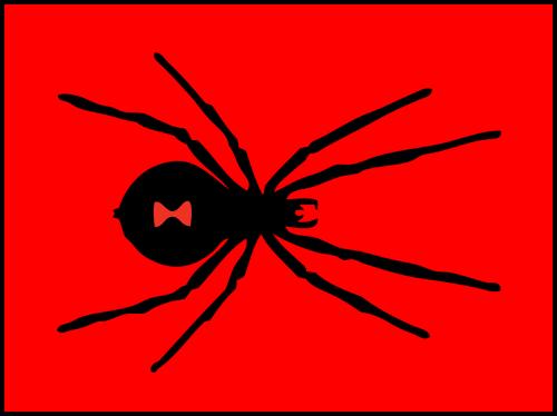 black widow spider red