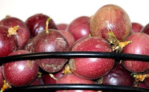 blackwood passion fruit exotic
