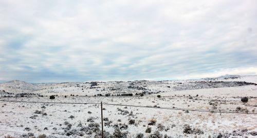 Bleak Snowy Landscape