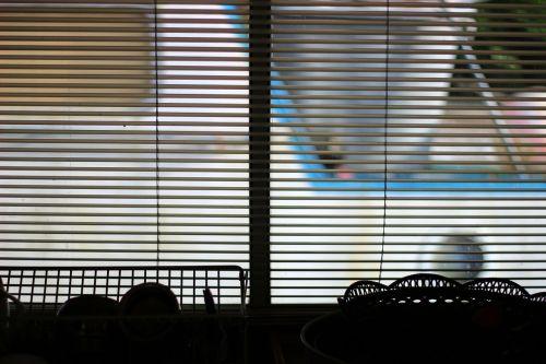 blind shade window