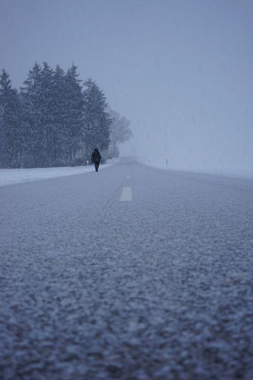 blizzard,kelias,kelias namo,vienas,palikti,šaltas,asmuo,žmogus,žiemos audra,snaigės,ledinis,sniegas,sniegas,šaltis,dribsnių,kristalai,žiema,kraštovaizdis,centrinė rezervacija,tuščia,kelyje