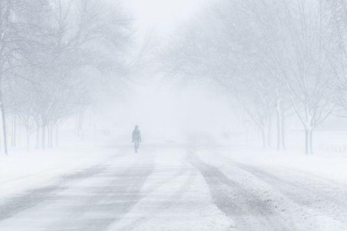 blizzard snow winter