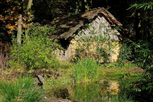 block house wood nature