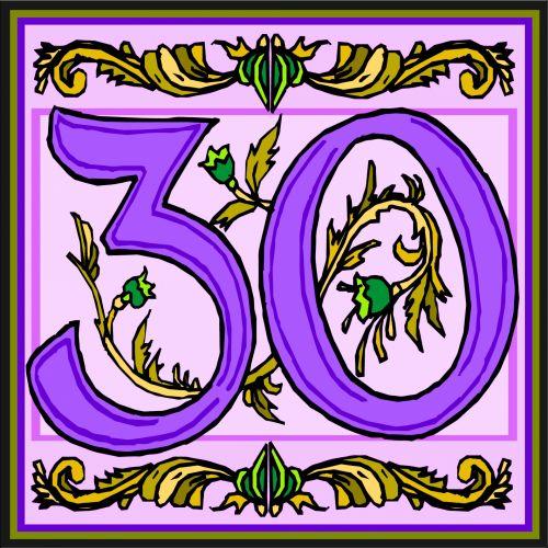 Flowery Purple Number 30
