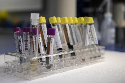 blood  analysis  laboratory