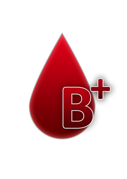 blood group b rh factor positive