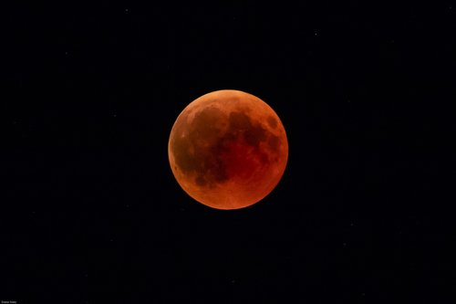 blood moon  moon  night