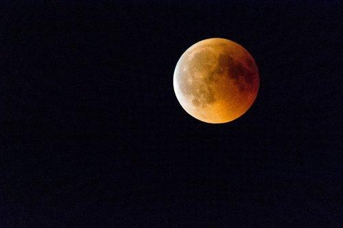 blood moon  moon  the moon shall be dark