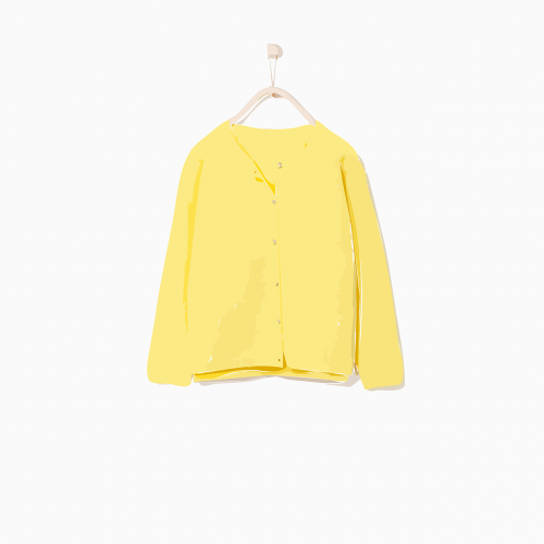 blouse clothing hanger